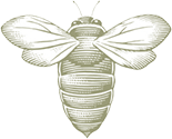 Beecharming Marketing Partnerships